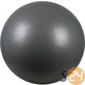 Avento abs silver gimnasztika labda, 55 cm sc-21734