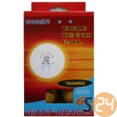 Giant dragon winner ping-pong labda sc-1688
