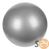 Everlast gimnasztika labda pumpával, 65 cm sc-5499