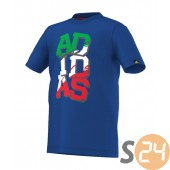 Adidas Póló Yb wc lineage t F79185