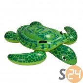 Kis tengeri teknős lovagló sc-16267