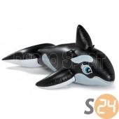 Nagy bálna lovagló sc-7859