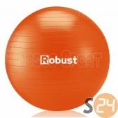 Robust fitnesz labda pumpával, 85 cm sc-12928
